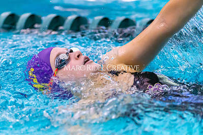 Broughton Swimming and Diving 2019