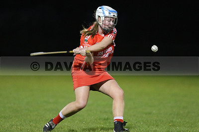 Glenealy Senior Camogie League 2017