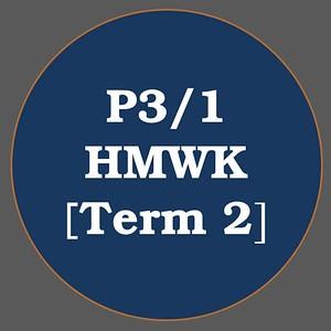 P3/1 HMWK T2