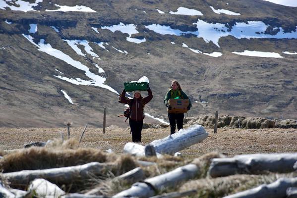 Hreinsunarferð í Furufjörð 2016
