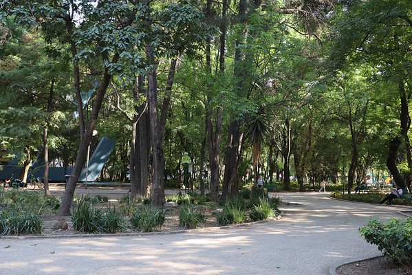Park in Roma Norte or Condesa