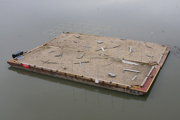 2010 Endangered Interior Least Tern Nesting Barge Project