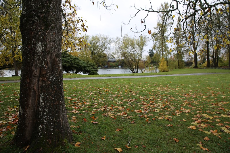 Blue Lake Park_16.JPG