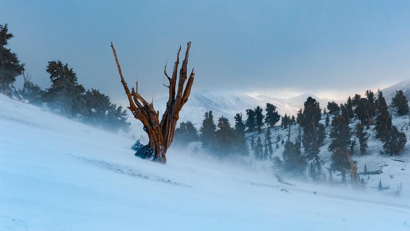 10_06_12 Owens Valley.0009.jpg