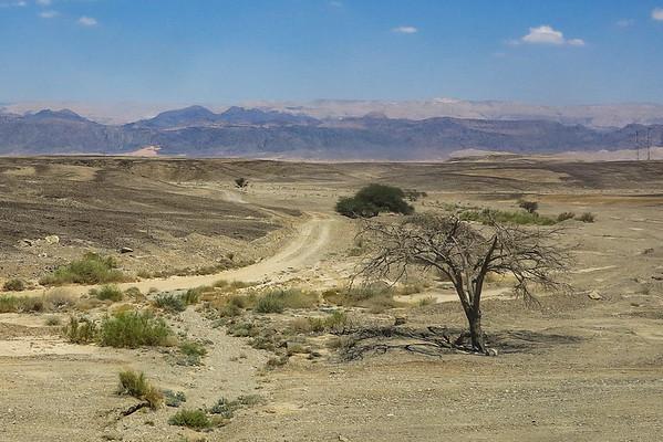 7/21: Bus to Eilat via Negev Desert