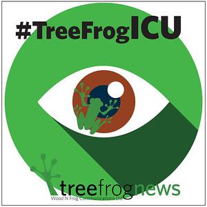 #TreeFrogICU