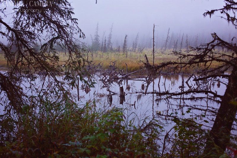 Eagle River6-7.jpg