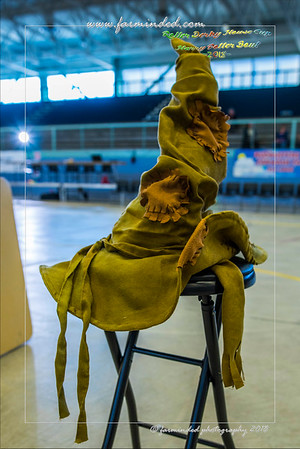 2018/04/07 - Roller Derby House Cup - Harry Potter