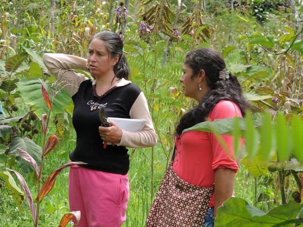 Women beekeepers photo essay