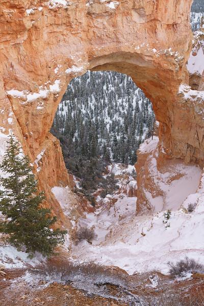 200319 - Bryce Canyon - 00599.jpg