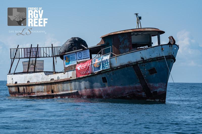 LS - People - RGV Reef-6.jpg