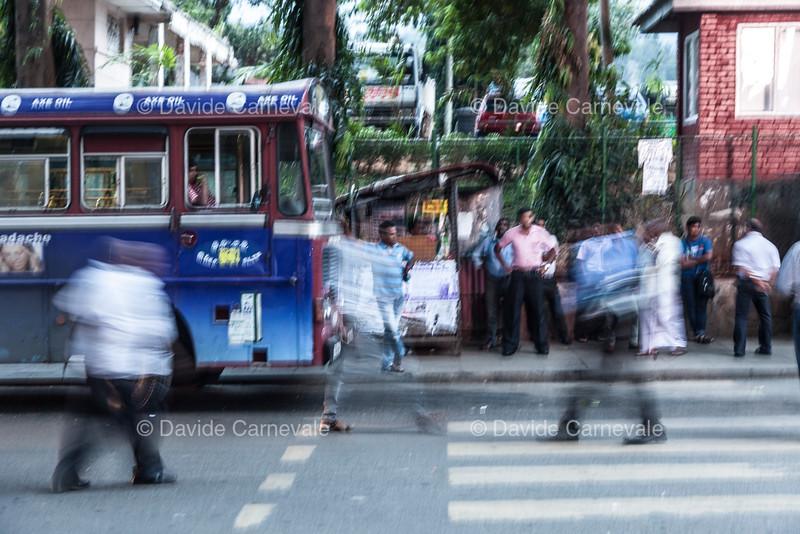 srilanka (28 di 74).jpg
