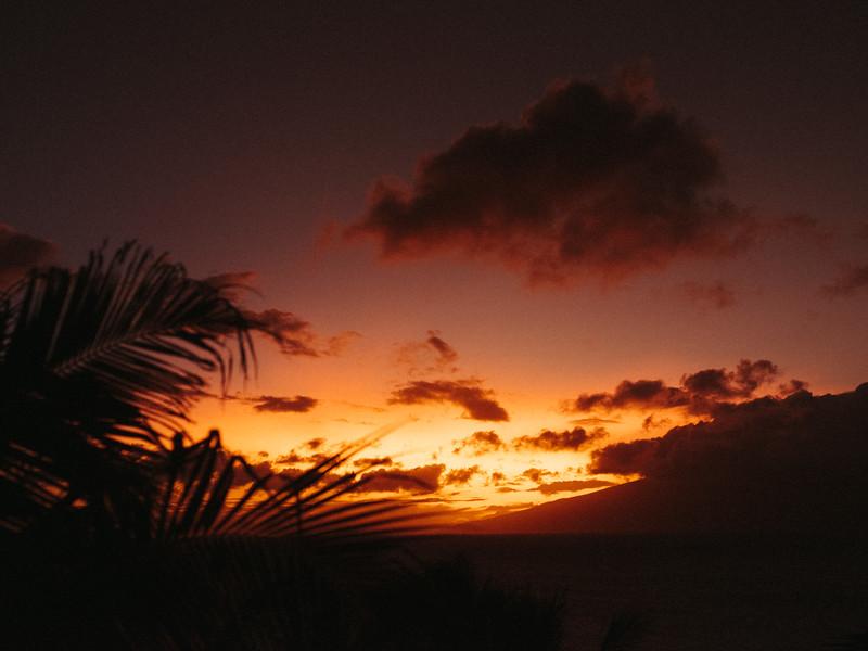 Maui2019-20.jpg