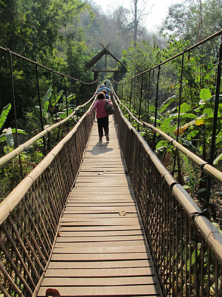 "Okay, this was ""fun.""  Something they don't bother to mention.  To get to the Elephant Training Camp, one must traverse this rather benign suspended foot bridge.  It swings and oscillates, especially when a joker or two decide to make it dance while you're on it."