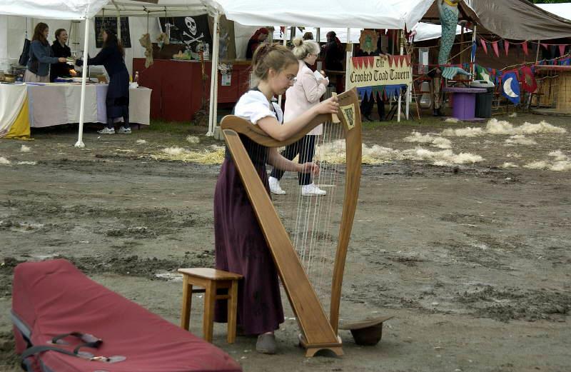 RF-HarpPlayer1.jpg