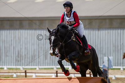 Equestrian 2017
