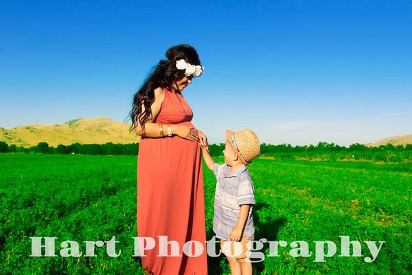 Shanon's Maternity photos