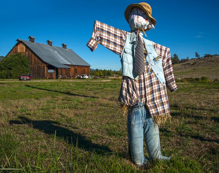 Jacksonville_Scarecrows-4.jpg