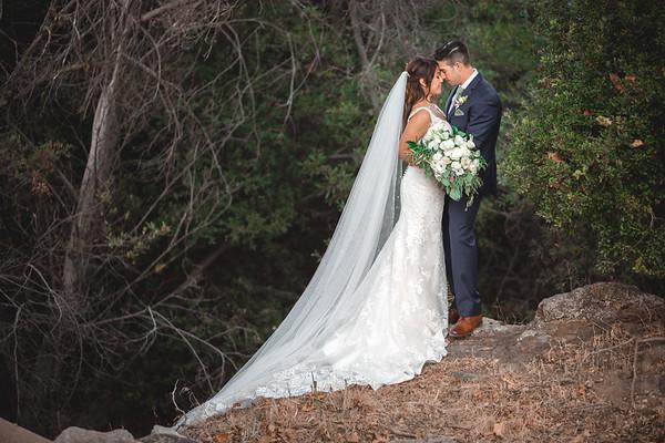 Alisha & David - Wedding Collection