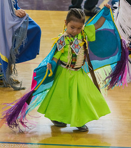 Dance for Mother Earth Powwow