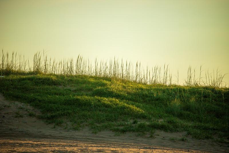 SandbridgeBeach-001