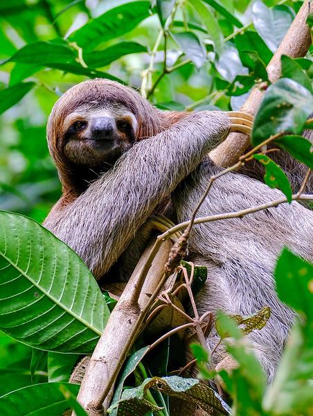 Costa Rica_081917_0222.jpg