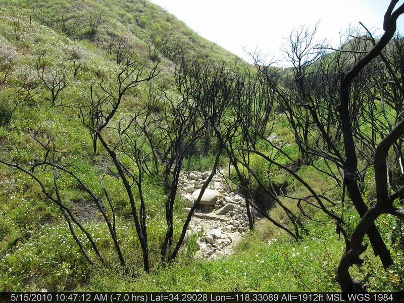 20100515033-Doc Larson Trail Recon.JPG