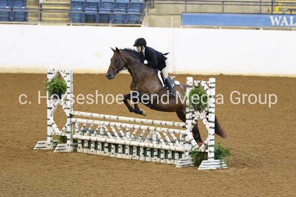 Trimble's Ridge Horse Show 9/1/2018