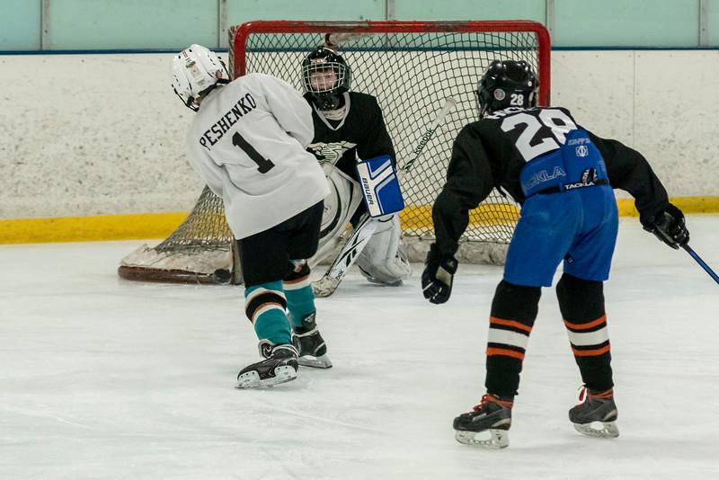 Sharks vs Skokie tournament teams-6536.jpg