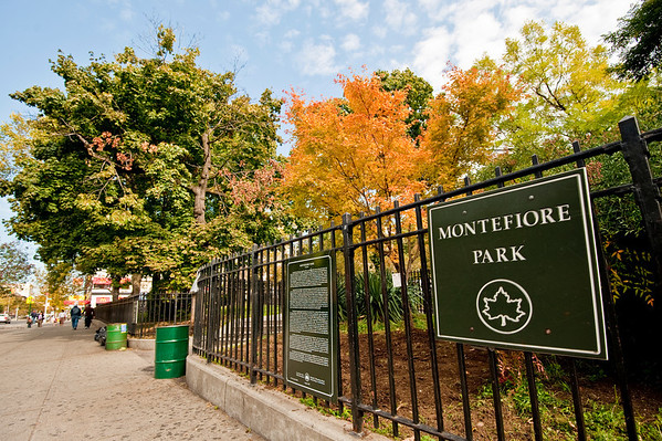 """Montefiore Park Neighborhood Association participates in """"It's My Park Day"""""""