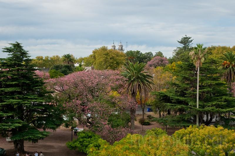 Best of Argentina (039) (DSC_3697)