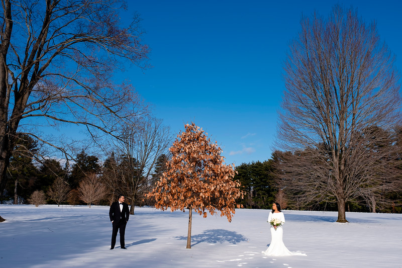 wedding (52 of 724).jpg