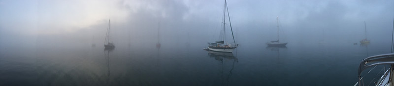 Foggy Morning for SV Jade East