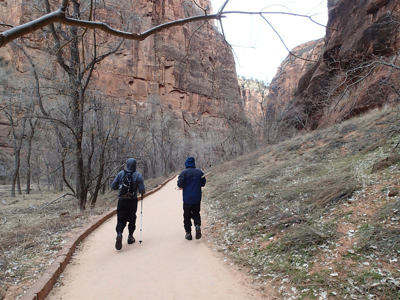 Zion National Park - Ashley 37.JPG