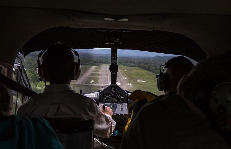 LandingTheBeaver.jpg