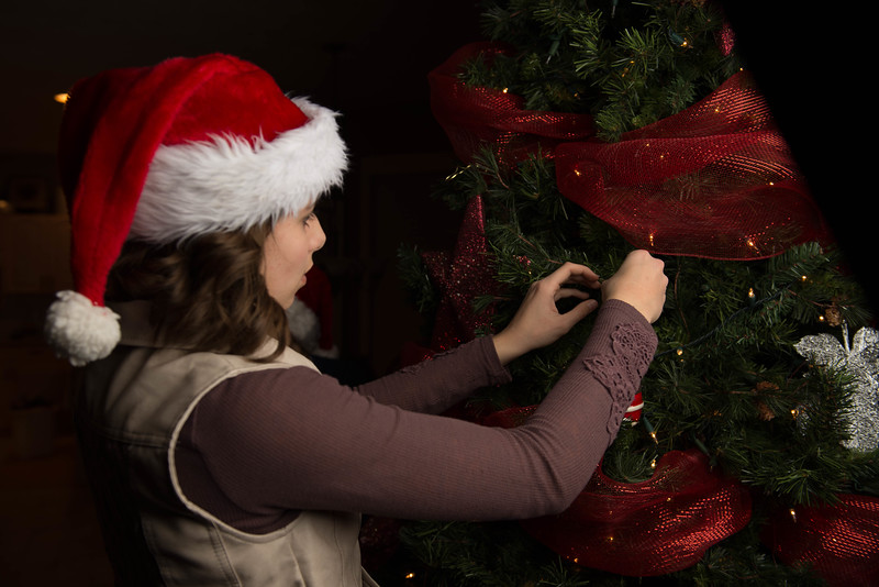 Christmas 2015-122-7.jpg