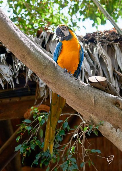 Biopark 300616W-106.jpg