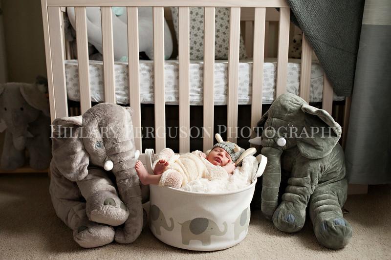 Hillary_Ferguson_Photography_Carlynn_Newborn014.jpg