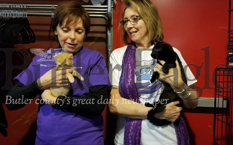 The pic w/ the 2 ladies both holding cats: Chris Kunkel, left, and Pat Potter of Stray Solutions Animal Rescue hold Little Man and Zander, respectively, at the first Litterbox Bingo. The event, held on Sunday at Family Bowlaway, raised about $4,500 for homeless cat care and fostering.