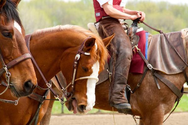 Parx Casino Horse Racing