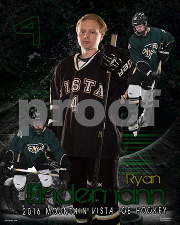 Vista Hockey Seniors 2016