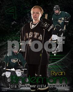 Vista Hockey 2016