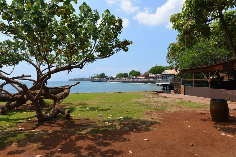 Maui - Hawaii - May 2013 - 28.jpg
