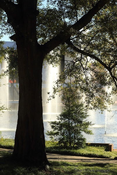 Fountains in the Cooper Library reflecting pool.  Clemson University