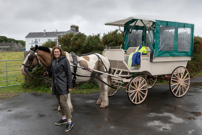 Woman standing near horse carriage, Galway City, County Galway, Ireland