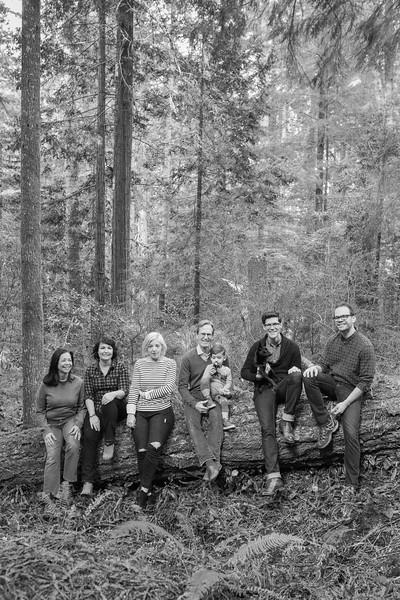 Travis Family 2016-131.jpg