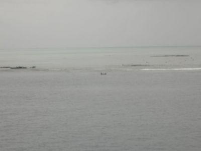 Bora Bora (1/22/2006)