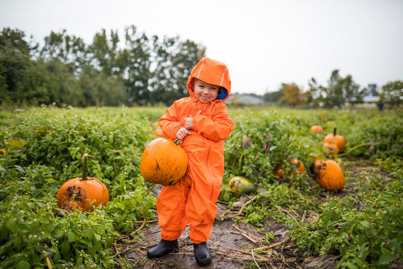 CIK-181007-apples and pumpkins-API_5865.jpg