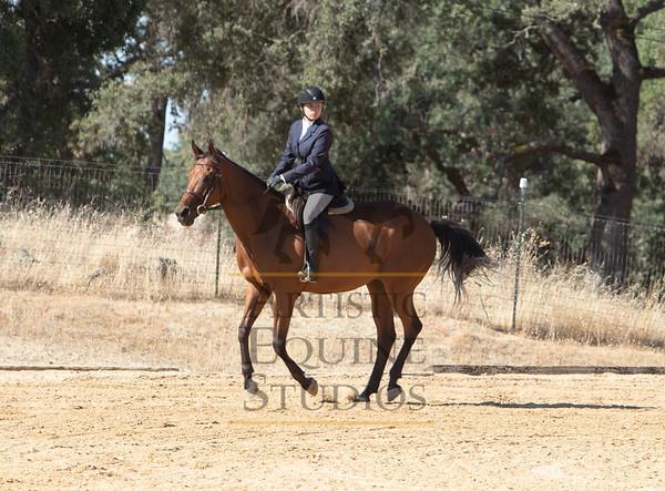 Rider 105- Equitation/Hunters