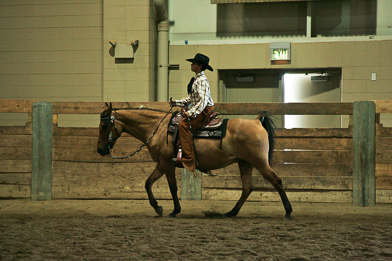 EMAA Class 42 Walk Trot Western 13 and Under